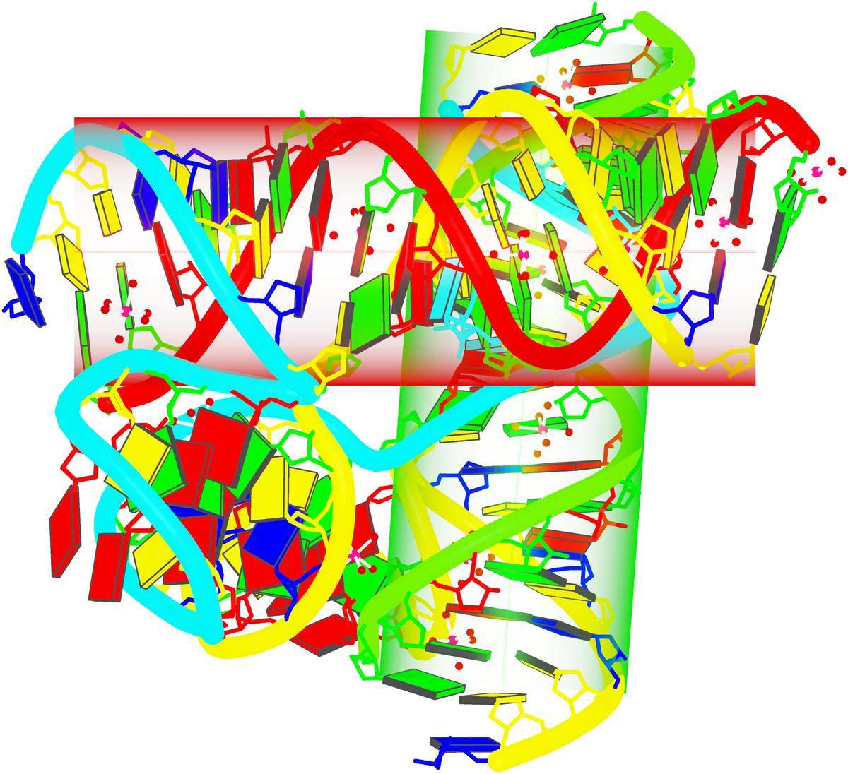 four-way DNA–RNA junction (1egk)